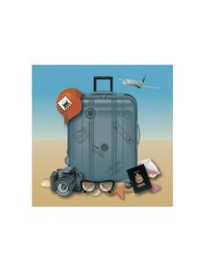 TravelChecklistGraphic-1